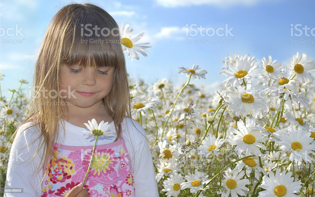 Summer joy royalty-free stock photo