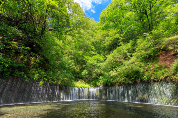 Sommer Karuizawa Shiraito fällt – Foto