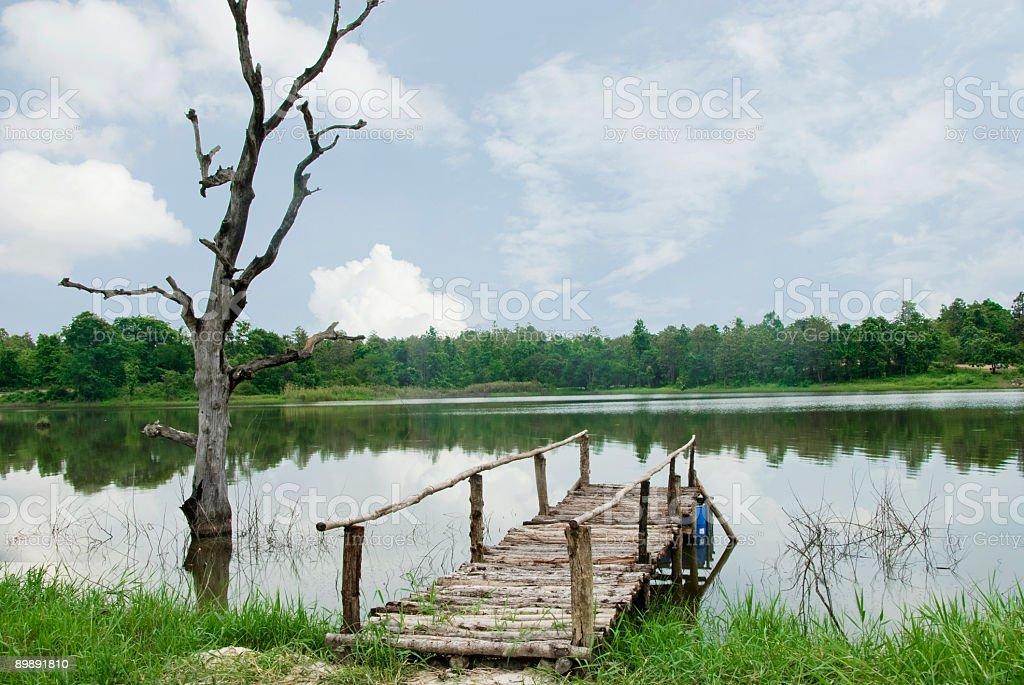 Summer lake 2 royalty-free stock photo