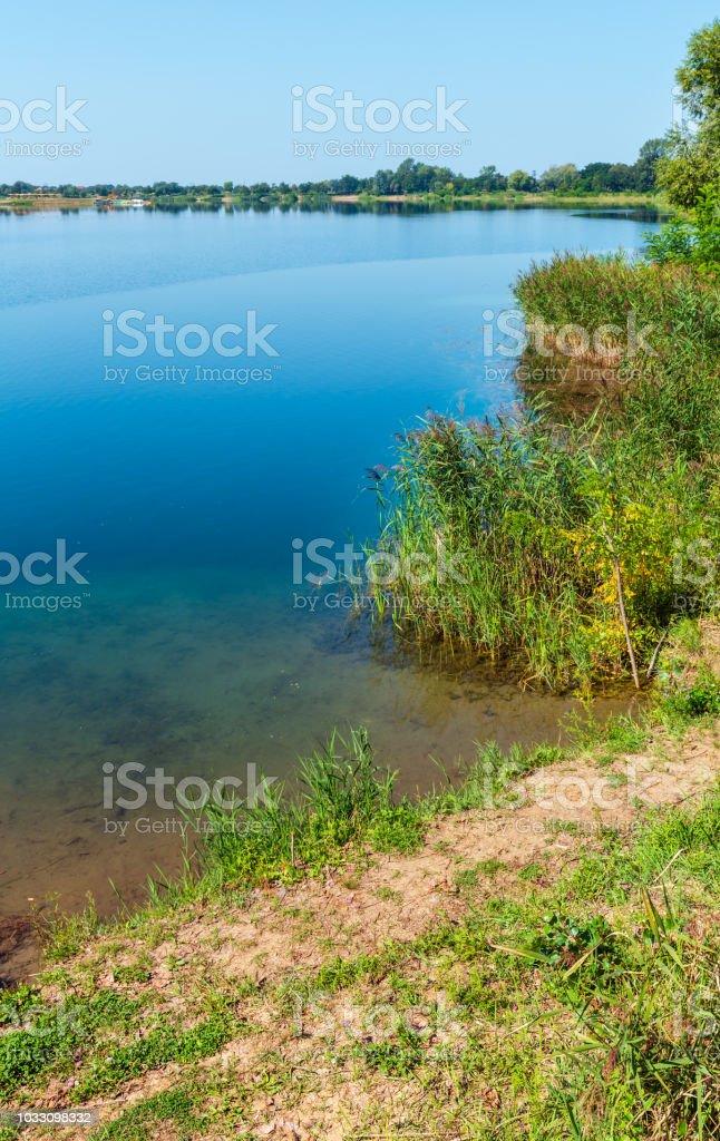 Sommer ruhig rushy Seeufer. – Foto