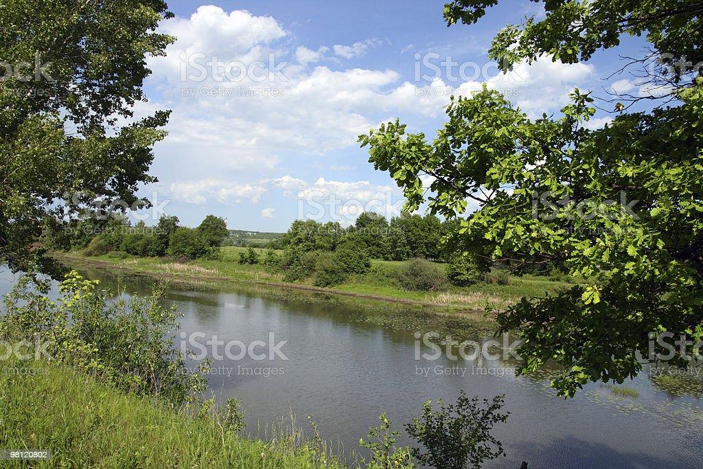 여름 호수 풍경 royalty-free 스톡 사진