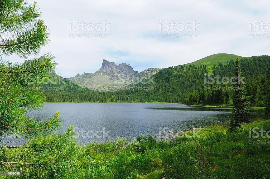 Summer Lake. royalty-free stock photo