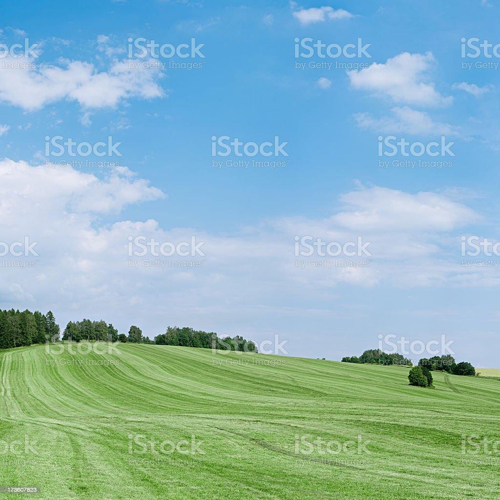 Summer landscape 87MPix XXXL  - meadow, blue sky, clouds royalty-free stock photo