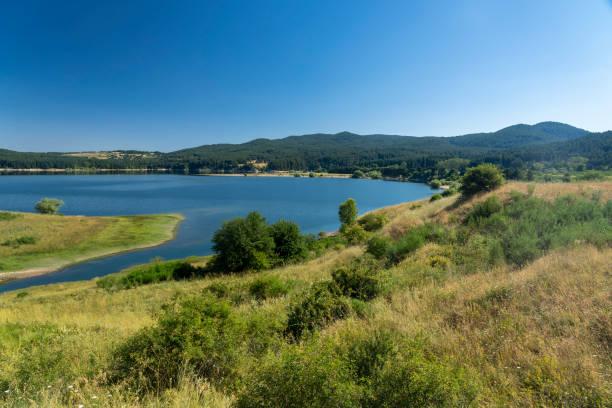 Paisagem do verão ao longo da estrada a Camigliatello, Sila. Lago Cecita - foto de acervo