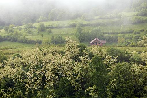여름 풍경 Ieud에서 0명에 대한 스톡 사진 및 기타 이미지
