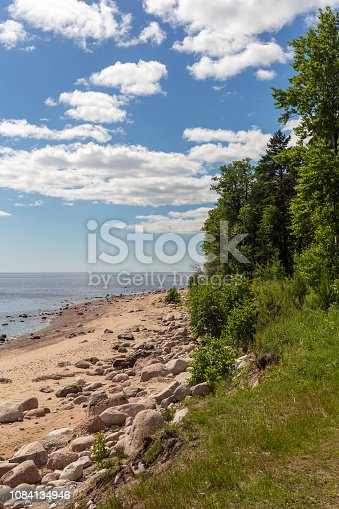 istock summer landscape by the sea 1084134946