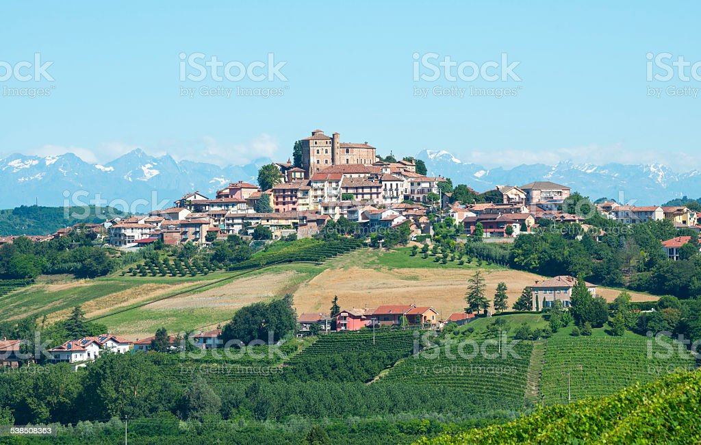 Summer landscape in Langhe (Italy) stock photo