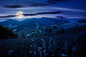 istock summer landscape in mountains at night 1264503817