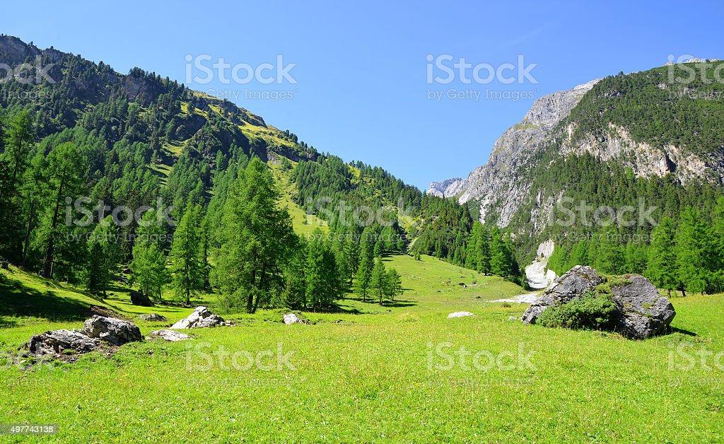 Summer landscape in Switzerland Alps stock photo