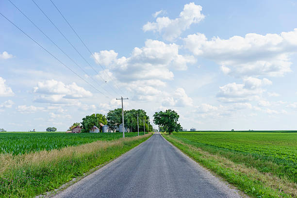 Summer landscape in the American Midwest