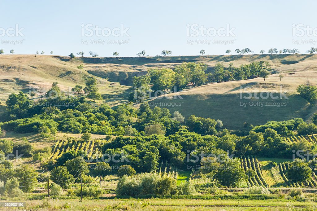 Summer landscape in the mountains and hills, Moldova stock photo