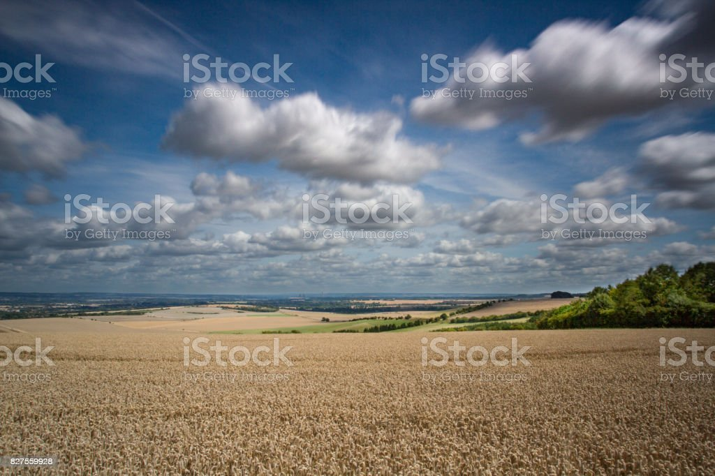 Summer Landscape looking from the Ridgeway in British Countryside stock photo