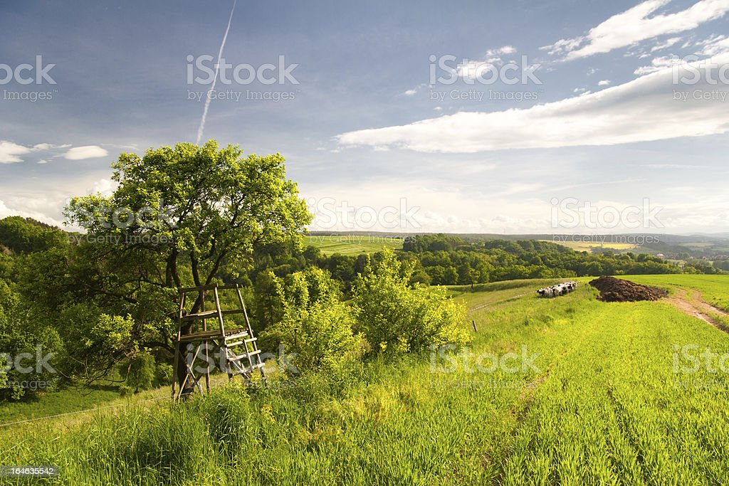Summer Landscape near Kahla stock photo
