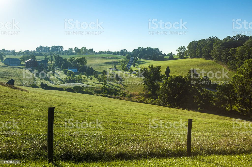 Summer Landscape of a Rolling Hillside stock photo