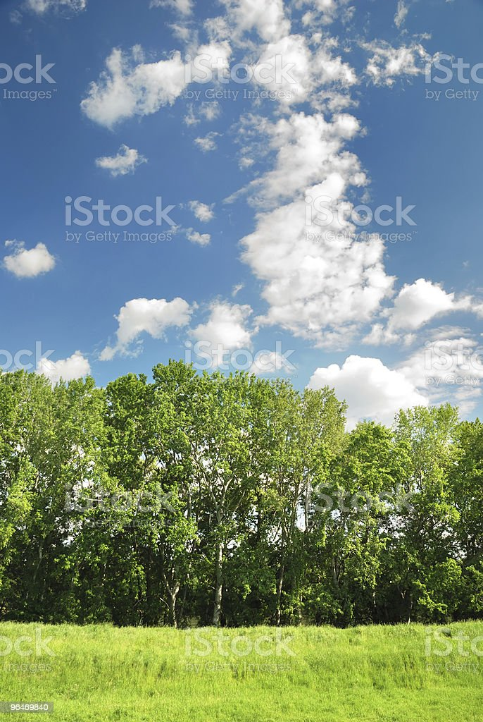 Summer landscape on blue sky background royalty-free stock photo