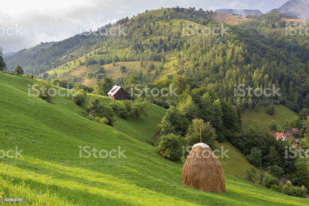 Summer Landscape stock photo