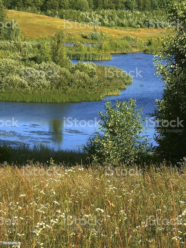 summer landscape royaltyfri bildbanksbilder