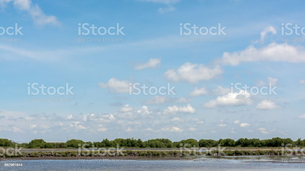 summer landscape sky cloudy royalty-free stock photo