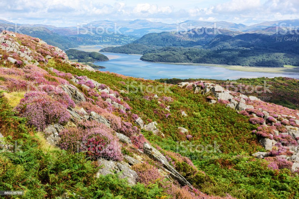 Summer landscape, Welsh mountains, River Mawddach stock photo