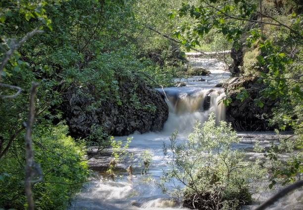 Summer landscape with a small waterfall stock photo