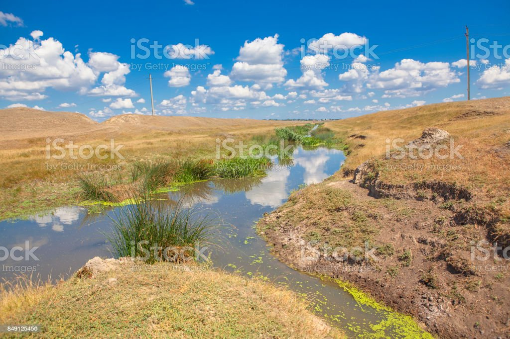 summer landscape with a stream stock photo