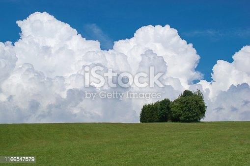 Summer landscape with cumulonimbus clouds on the sky