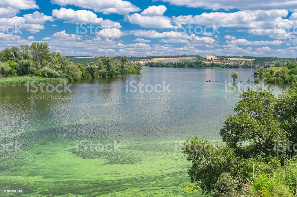 Summer landscape with Dnepr river covered with cyanobacterias​​​ foto