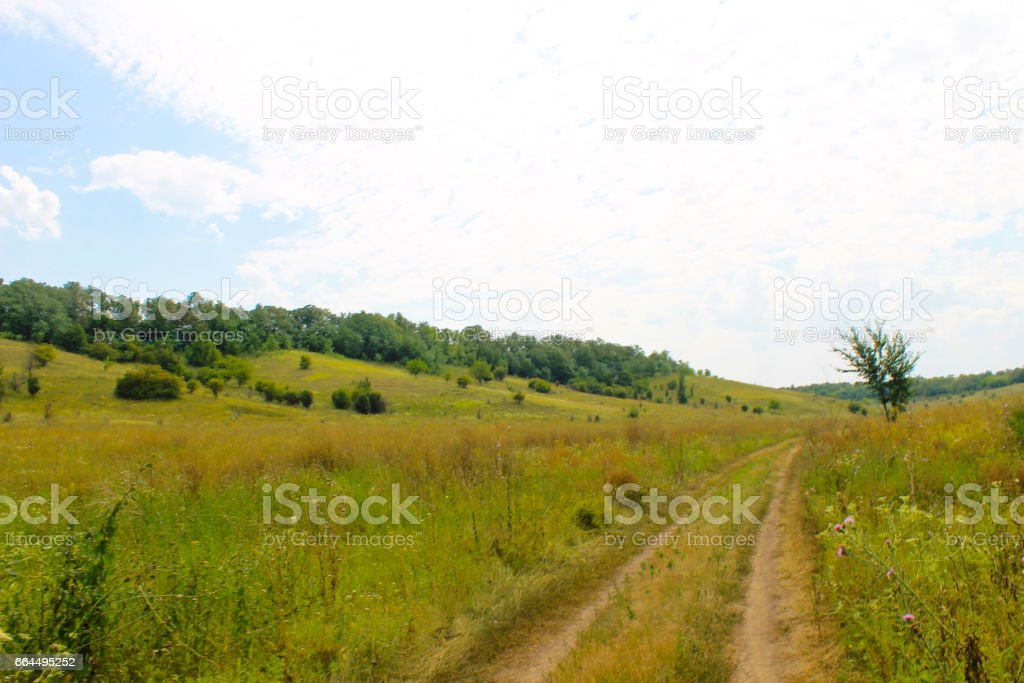 Summer landscape with meadow, trees and hills stock photo