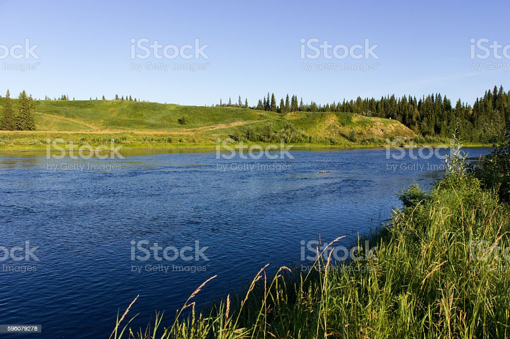 Summer landscape with river and forest royalty-free stock photo