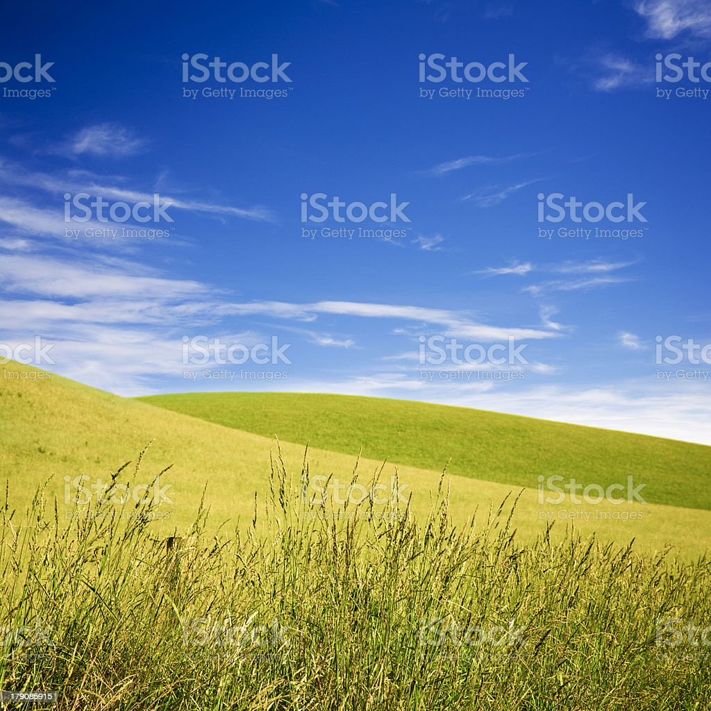 Summer Landscape with Rolling Hills and Deep Blue Sky royalty-free stock photo