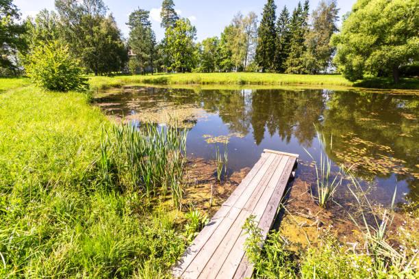 Sommerlandschaft mit kleinem Teich – Foto