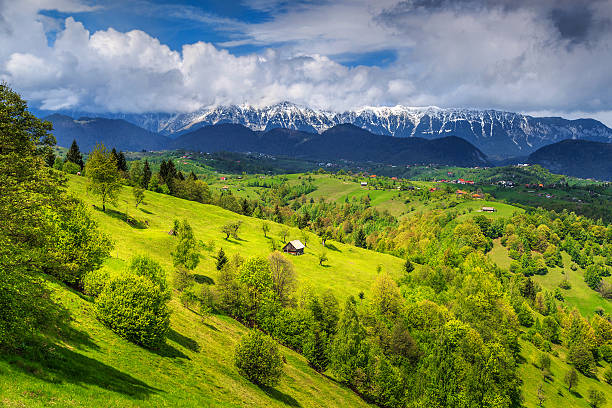 summer landscape with snowy mountains near brasov,transylvania,romania,europe - romania stock photos and pictures