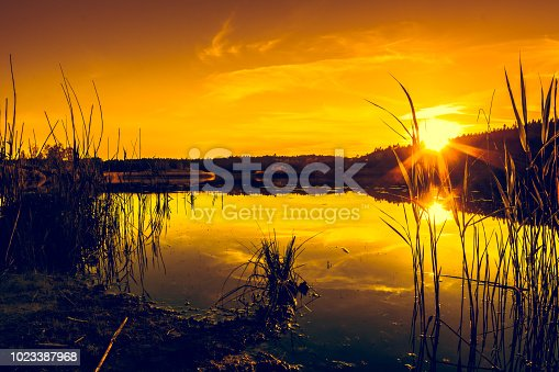 istock Summer landscape with sunset on the lake. Beautiful orange sundown or sunrise over forest and peaceful water with reflection of sun light, warm scenery in nature. 1023387968