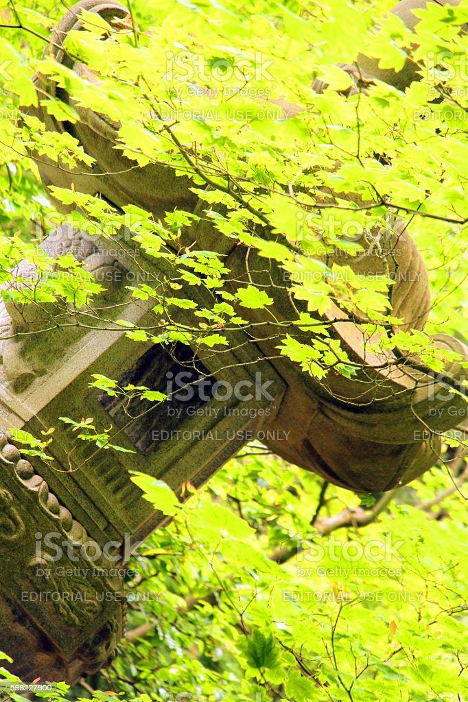 Summer Lantern foto royalty-free