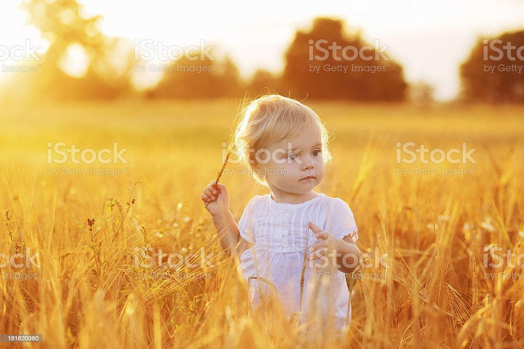 Summer  little baby royalty-free stock photo