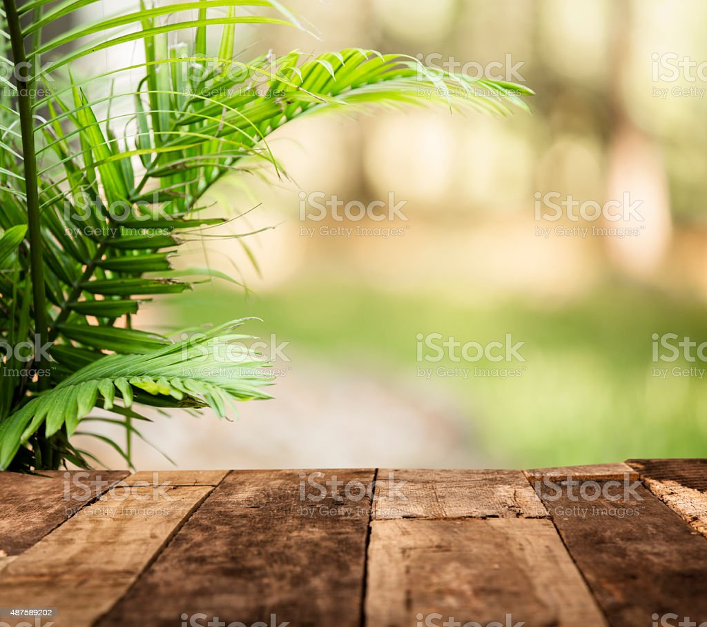Summer Lush Green Background Fern Rustic Wooden Table Patio Royalty Free