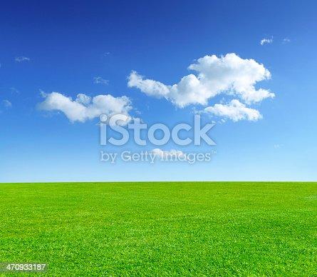 istock Summer meadow 470933187