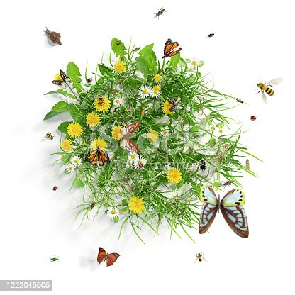 istock Summer meadow with flowers and various insects, isolated on white background. 3D rendering. 1222045505