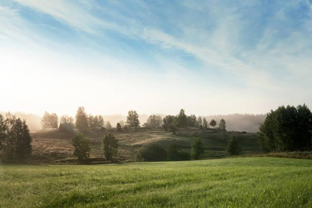 Sommarmorgon fält och dimma över vackra swediah landskap bildbanksfoto