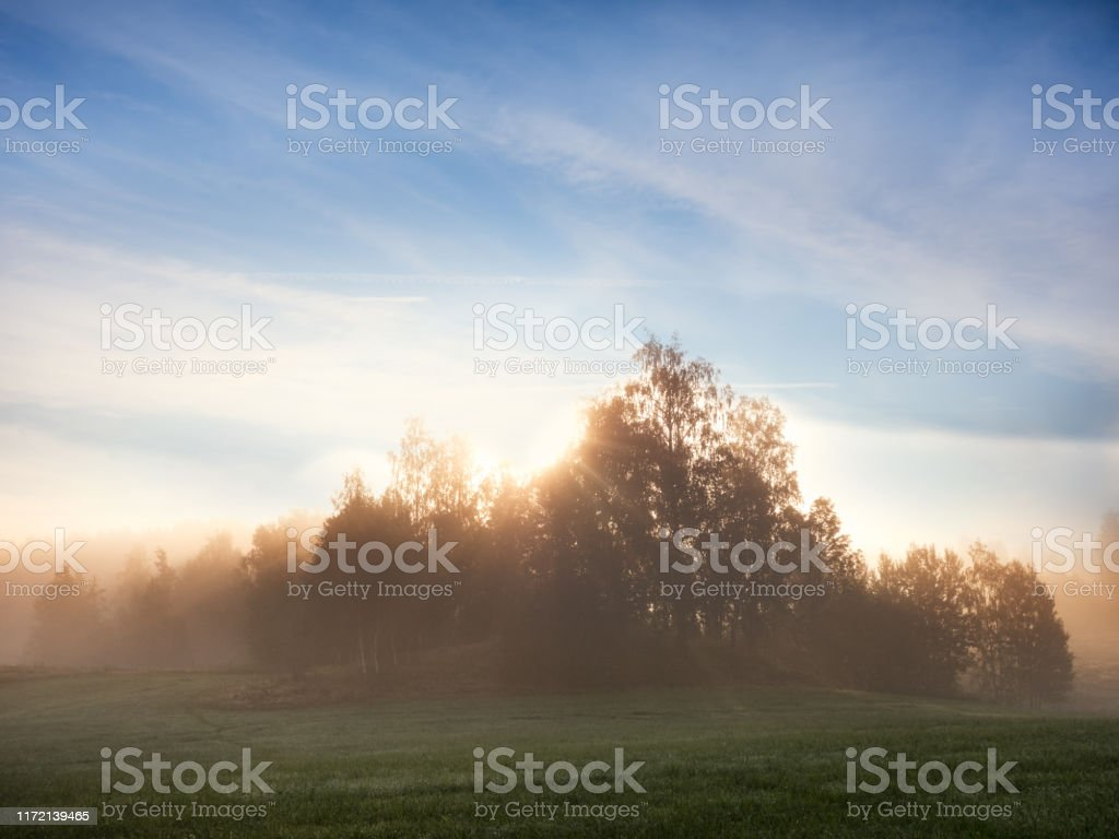 Sommarmorgon fält och dimma över vackra swediah landskap - Royaltyfri Bildbakgrund Bildbanksbilder
