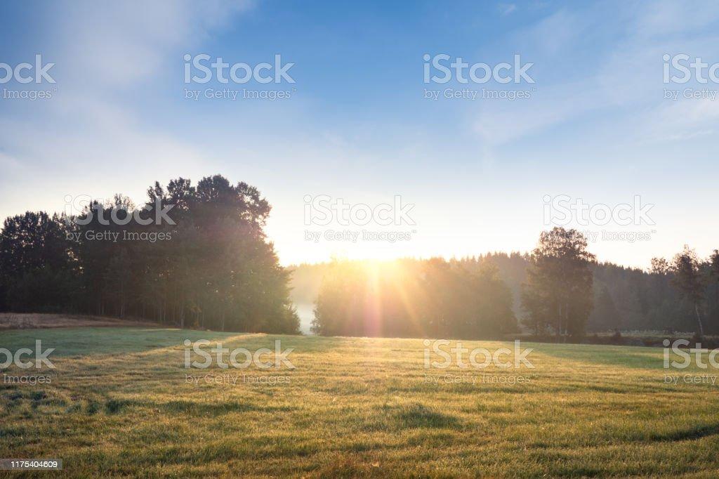 Sommarmorgon fält och dimma över vackert svenskt landskap - Royaltyfri Bildbakgrund Bildbanksbilder