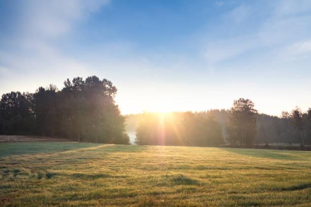 Sommarmorgon fält och dimma över vackert svenskt landskap bildbanksfoto
