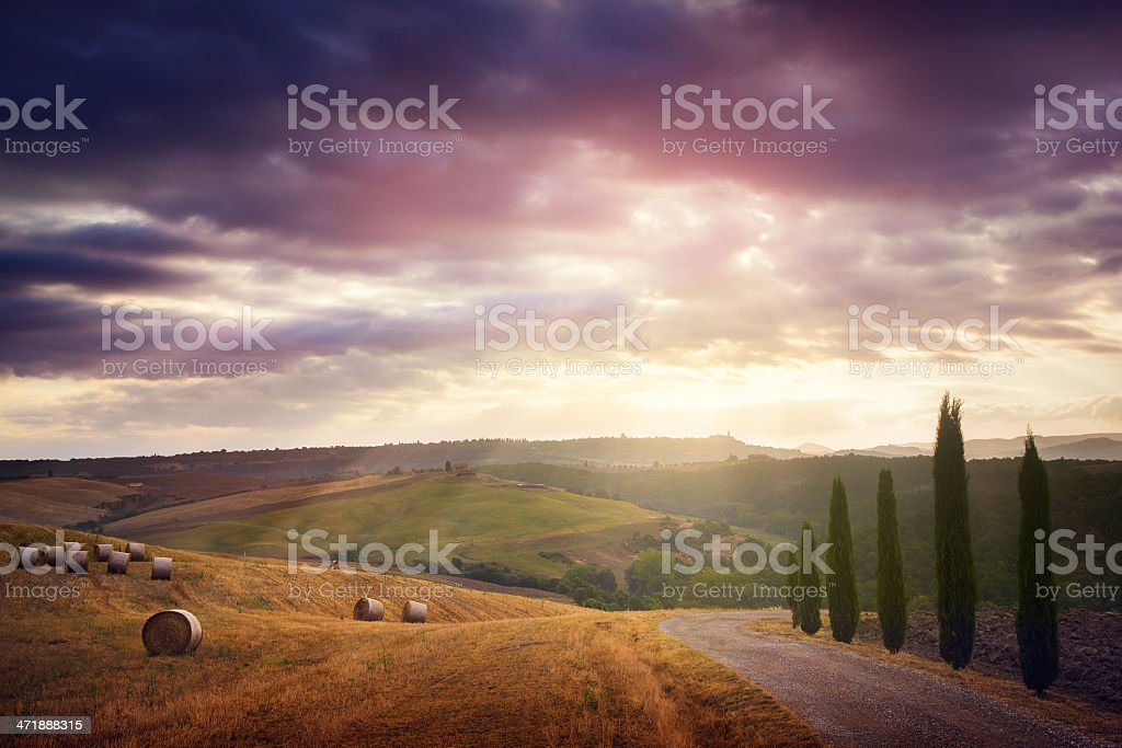 summer morning in Tuscany royalty-free stock photo