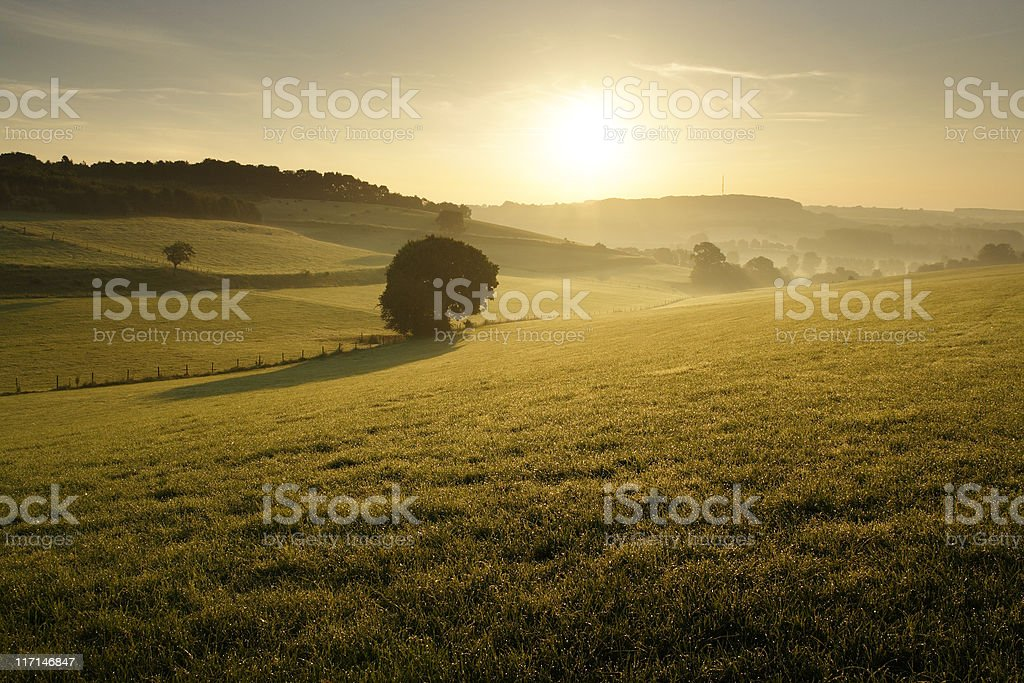 Summer morning landscape stock photo