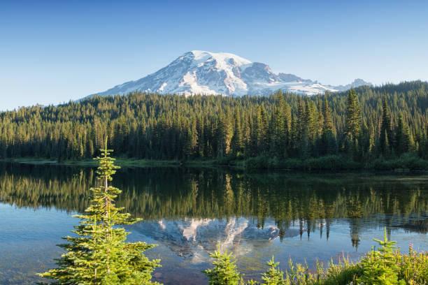 Summer Mount Rainier stock photo