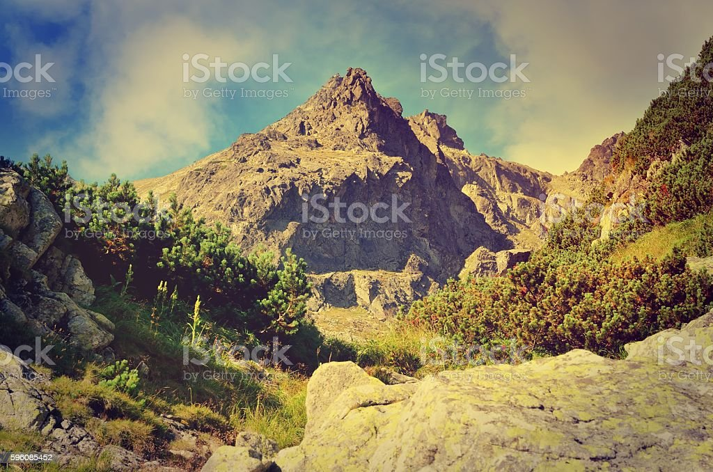 Summer mountain landscape in vintage style. royalty-free stock photo