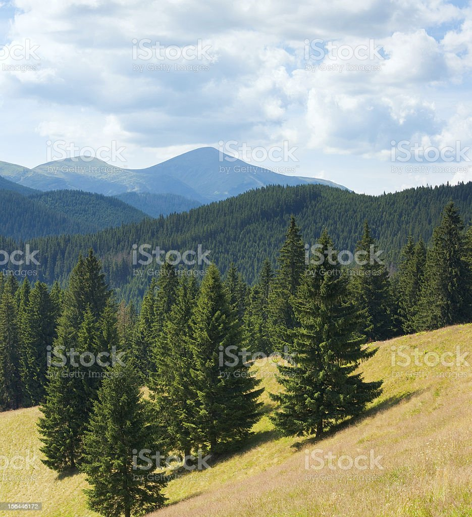 Summer mountain landscape royalty-free stock photo