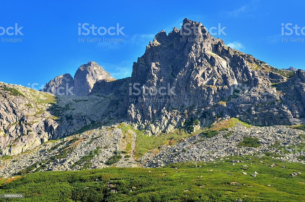 Summer mountain landscape. royalty-free stock photo