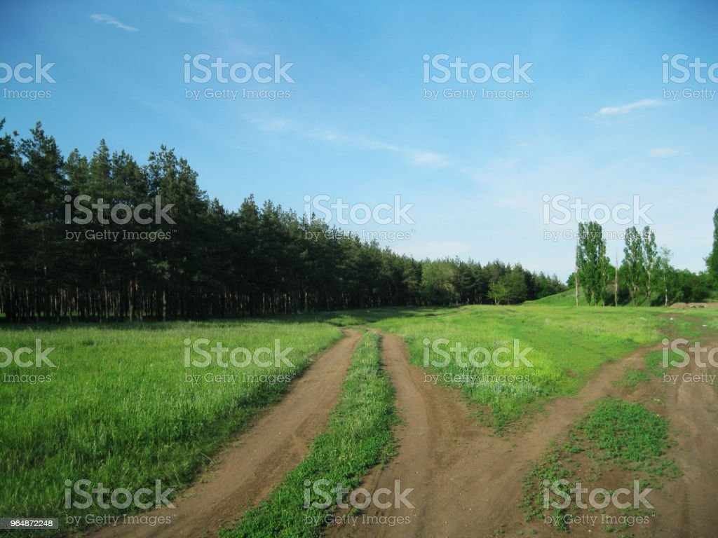 Summer nature landscape with wood, grass, blue sky and ground pathway from three roads. royalty-free stock photo