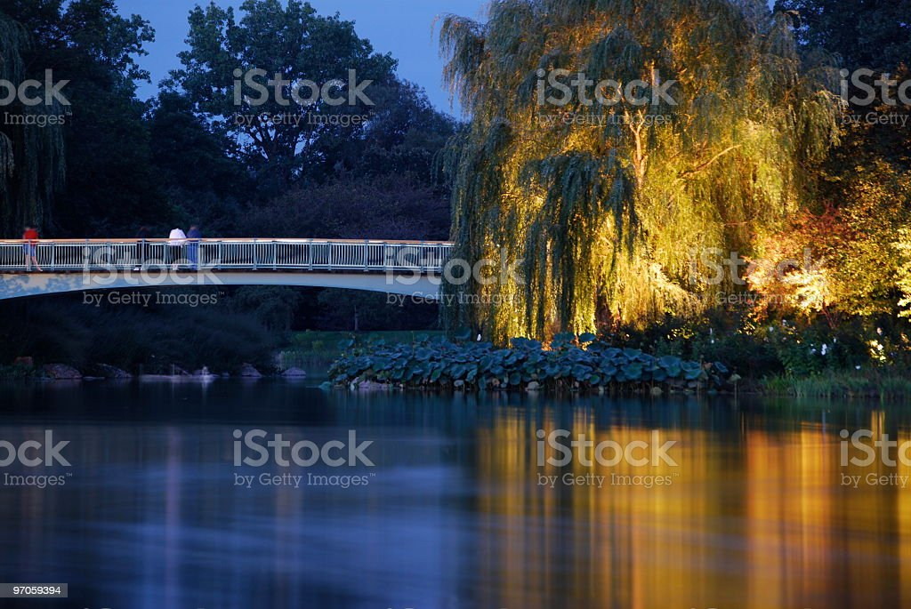 Summer Night at the Botanic Garden stock photo